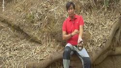 """""""Siêu nhân"""" Philippines cho hổ mang chúa cắn để duy trì sức mạnh"""