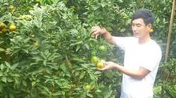 Xây được nhà 1 tỷ, mua ô tô hơn 1 tỷ nhờ trồng cam