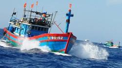 """Tàu chìm, 5 ngư dân mất tích sau khi đâm va với """"tàu lạ"""""""