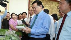 Phó Thủ tướng Vương Đình Huệ nếm vải thiều ngon nhất trong lịch sử ở Lục Ngạn