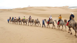 Trải nghiệm phi ngựa trên thảo nguyên, cưỡi lạc đà ở sa mạc Nội Mông