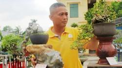 Bộ sưu tập bonsai độc lạ, tiền tỷ của 1 người vốn là thợ...may