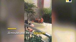 TQ: Xe BMW mới mua gần 2 tỷ đồng cháy rụi vì hành động bất cẩn