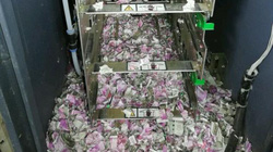 Sốc: Chuột gặm nát 400 triệu đồng trong máy ATM
