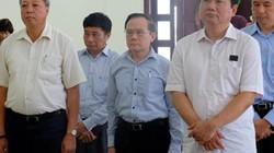 Nhận ủy quyền của ông Đinh La Thăng nhưng không biết luật?