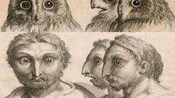 Cuộc sống con người sẽ ra sao nếu tiến hóa thành chim?