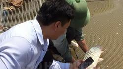Đáng nể: Hộ đầu tiên dán tem truy xuất không thấm nước cho cá giòn