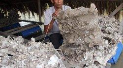 Gần 100 hộ nuôi thủy sản ở Trà Vinh trắng tay vì hàu chết sạch