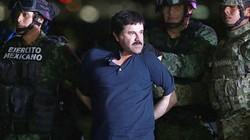 Trùm ma túy El Chapo giàu nhất thế giới nguy hiểm đến mức nào?