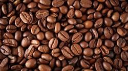 Giá nông sản hôm nay 28/6: Giá cà phê tăng tiếp 400 đồng/kg, giá tiêu tăng nhẹ