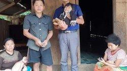 Điện Biên: Cám cảnh vợ chồng nghèo người Mông nuôi 3 con tật nguyền