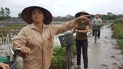 Vụ Chủ tịch Hà Nam bị kiện: Liệu có sự bao che, dung túng vi phạm?