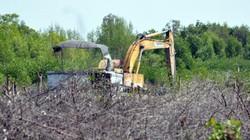 Thu hồi quyết định công nhận NTM xã tự cho dân thuê đất nuôi sò đổ bùn ra sông