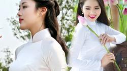 Thiếu nữ đẹp như tranh vẽ khoe sắc bên bốn mùa hoa