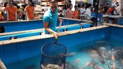 """12 loại cá đặc sản sông Đà """"đổ bộ"""" về Thủ đô chiều lòng """"thượng đế"""""""