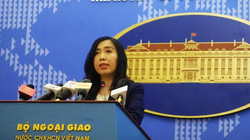 Phản ứng mới nhất của Việt Nam sau phán quyết Đoàn Thị Hương