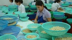 Bình Phước: Cần phát huy lợi thế các khu kinh tế cửa khẩu