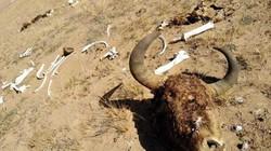Nơi nguy hiểm nhất ở Trung Quốc được ví như thung lũng chết chóc