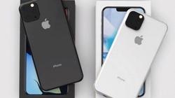 iPhone XI lộ chi tiết quan trọng trên camera, iFan phấn khởi tột độ
