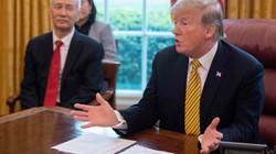 Trump lên tiếng về thời điểm phù hợp gặp Tập Cận Bình