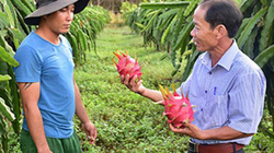 Kiểm tra, giám sát - lợi cho Hội, tốt cho nông dân