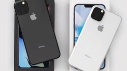 Apple cần làm gì để nâng tầm iPhone 11 so với Android?