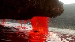 Nguồn gốc bí ẩn trăm năm về Thác máu ở Nam Cực