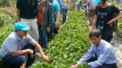 Sang Thái Lan, nông dân giỏi Việt Nam thấy gì, học được gì?
