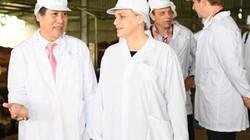 Thứ trưởng Hà Lan thăm vùng chăn nuôi bò sữa tại Hà Nam