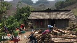 Xót xa gia cảnh khó khăn của bé trai người Mông bị chó cắn tử vong