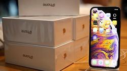 Apple lại sắp hứng chịu đợt sụt giảm doanh số iPhone tồi tệ nhất?