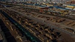 TQ gây tranh cãi khi không ngừng khai thác tài nguyên quý báu của Nga