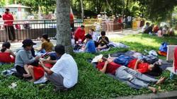 """Du khách ngủ la liệt trong Thảo Cầm Viên dưới cái nắng """"đổ lửa"""" ở TP.HCM"""