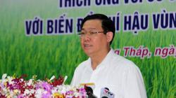 """PTT Vương Đình Huệ: """"Hỗ trợ hợp tác xã trong biến đổi khí hậu"""""""