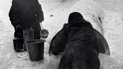 7 điều giúp Leningrad chống đỡ sự bao vây khắc nghiệt của phát xít Đức