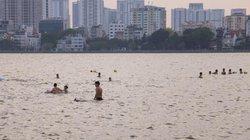 Bệnh chết người khi tắm ở hồ Tây?