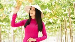 """Hoa hậu Tiểu Vy và 2 á hậu """"chết mê"""" trong vườn nho ở Ninh Thuận"""