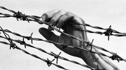 Ám ảnh những bàn tay trong chiến tranh Việt Nam (Phần 1): Vô vọng