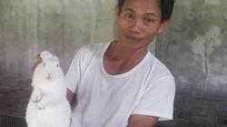 Làm giàu ở nông thôn: Nuôi thỏ bắt ăn kham khổ, bán đắt như tôm tươi