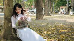 ẢNH: Mùa lá sấu nhuộm vàng trên con đường lãng mạn nhất Hà Nội