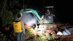 Lạng Sơn: Dính cúm A/H5N6, hơn 2.000 gà vịt buộc phải tiêu hủy