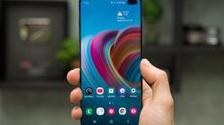 Cách tạo ảnh GIF và video để làm hình nền cho smartphone