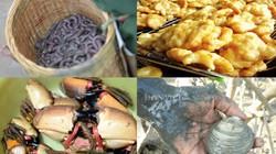 Nghỉ lễ 30.4, đi ăn hết Quảng Ninh với những đặc sản nức tiếng này
