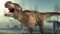Khủng long tuyệt chủng chỉ vì... không còn chỗ để giao phối