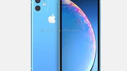 iPhone XR 2019 quá đẹp, iFan lại phải móc hầu bao