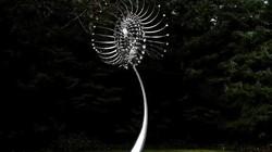 Điều gì xảy ra nếu những bức điêu khắc biết chuyển động?
