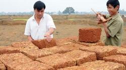 Thủ đô có làng trăm năm ra đồng đục đẽo đá ong làm đẹp cho đời