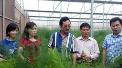 GRDP ngành nông nghiệp Thủ đô có thể đạt 3,2%
