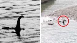 Quái vật hồ Loch Ness đã bơi đến Canada?