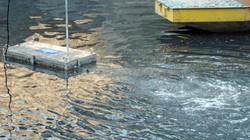 """Sông Tô Lịch sau 3 ngày đặt máy lọc nước """"thần kỳ"""": Người dân nói gì?"""
